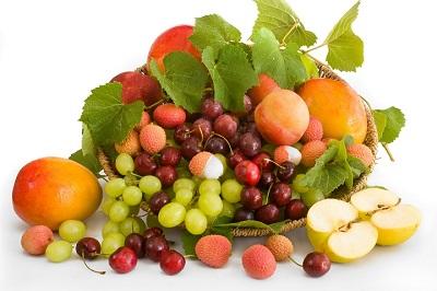 Herbst-Aktivierung-Obst-GemueseWl7NJqOZWzo7x
