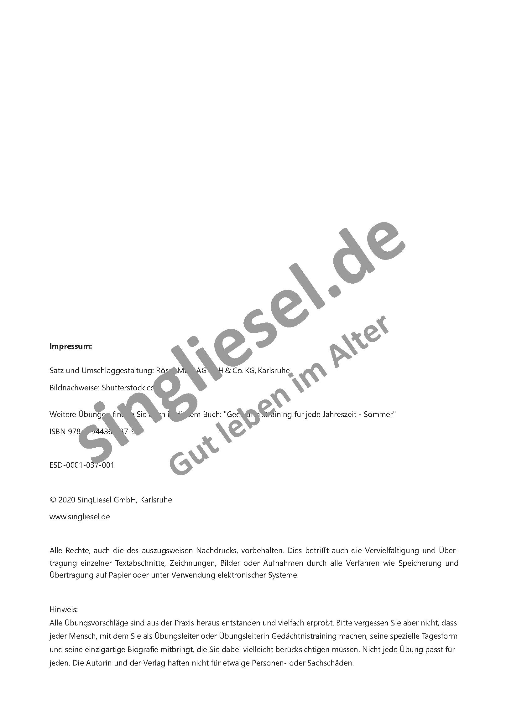 Sommerblumen   Gedächtnistraining für jede Jahreszeit Sofort Download als  PDF