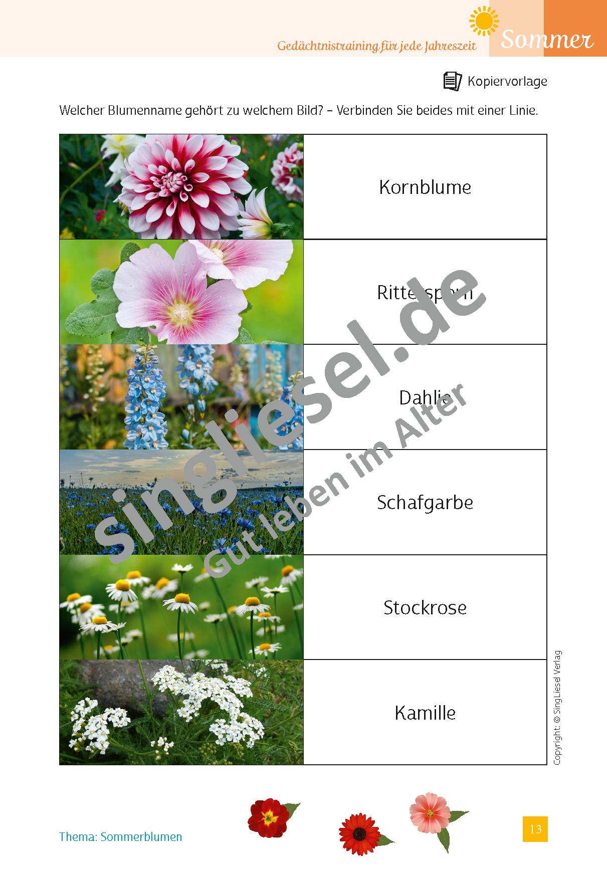 ESD-0001-037-001__Vorschau-13apQcJfh1v6jtk