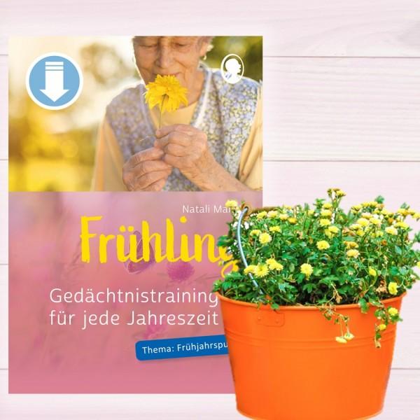 Gedächtnistraining für Senioren Frühling Frühjahrsputz Titel