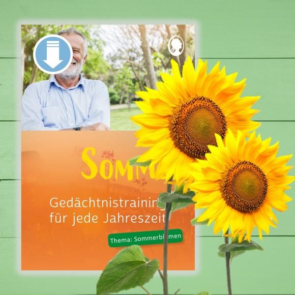 Gedächtnistraining Senioren. Sommer. Sommerblumen. Übungen und Arbeitsblätter.